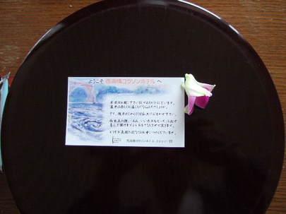 2008_0422hausutenbosu0265