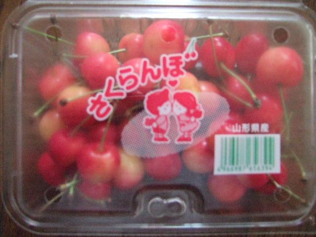 2010_0620touhoku0657